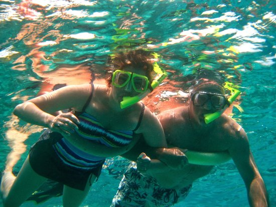 Snorkeling in Virgin Islands - Picture of St Thomas Cruise ...
