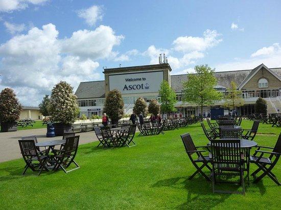Ascot Racecourse: ground