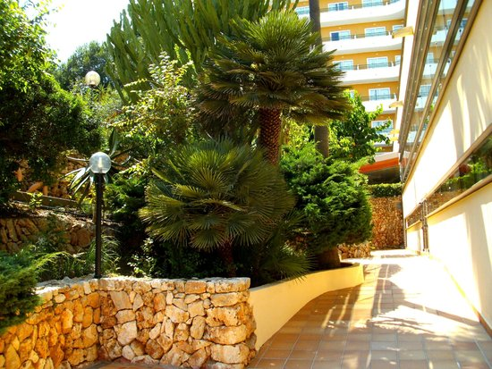 Cala Marsal: Hotelgarten