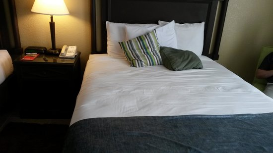 Park Inn By Radisson Resort and Conference Center Orlando: bed!
