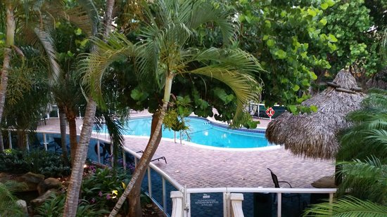 Universal Palms Hotel: Pool view