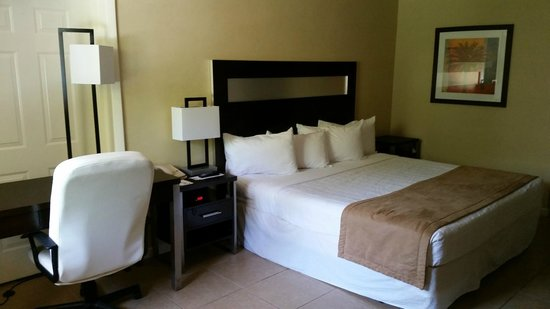 Universal Palms Hotel: King Bed