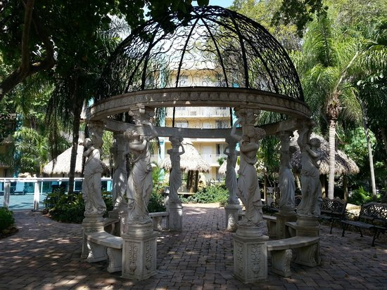 Universal Palms Hotel : Garden Area