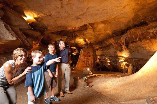 Georgetown, TX: Inner Space Cavern Adventure