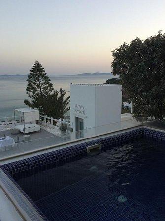 Grace Mykonos Hotel: Plunge Pool/Spa