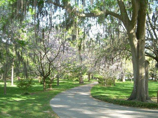 Forsyth Park: Walkways
