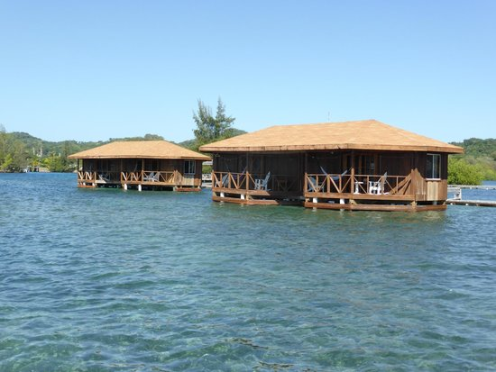 CoCo View Resort : 2 of the bungalows