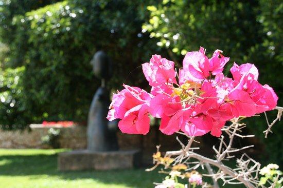 Fundació Pilar i Joan Miró a Mallorca: Gardens
