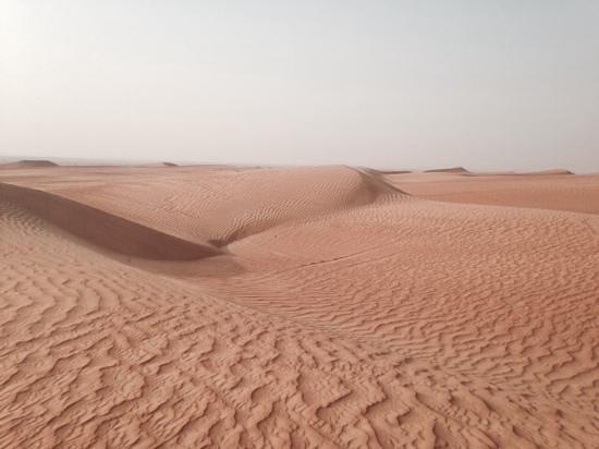Al Maha, A Luxury Collection Desert Resort & Spa: Desert