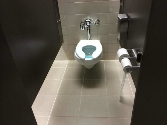 Gorges State Park: Modern toilet in the Visitor Center