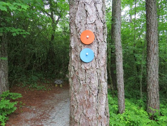 Gorges State Park: Well marked trail