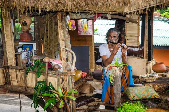 The Heritage Rest - Ambepussa : Flute musician sat in his treehouse