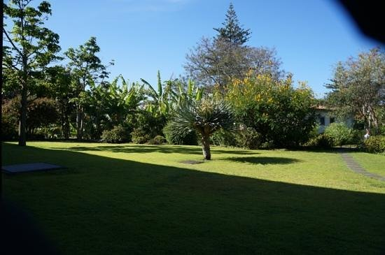 Quinta da Casa Branca: view from room 202