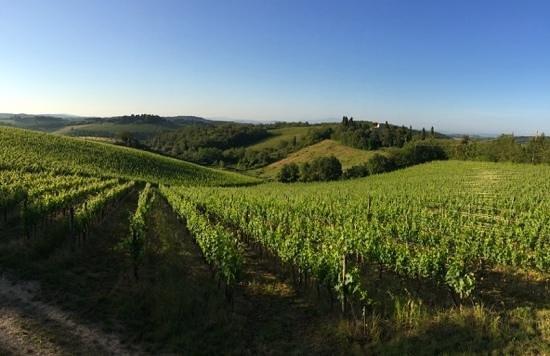 Borgo Argenina: view from our Picolla Villa kitchen!  breathtaking!