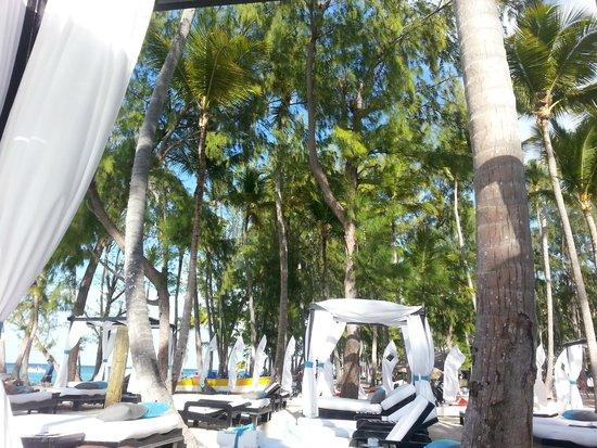 Presidential Suites - Punta Cana: 05.30.14 thru 06.03.14