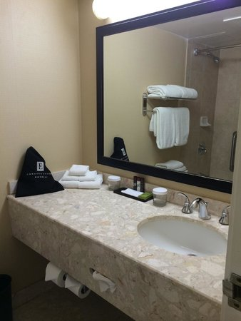 Embassy Suites by Hilton Indianapolis - North: Bathroom