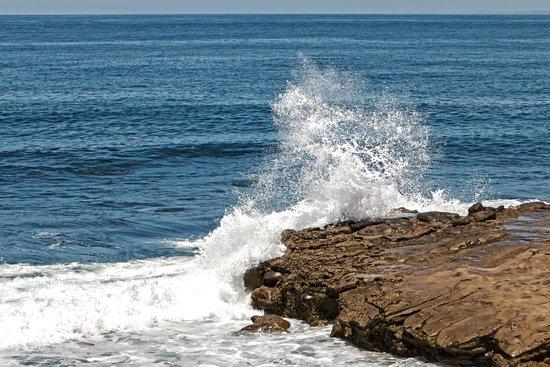 La Jolla Shores: Splash