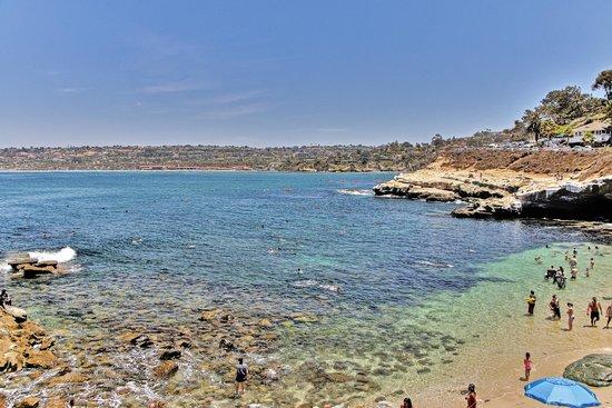 La Jolla Shores: Did I mention swimming?