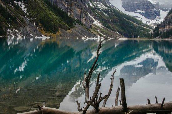Fairmont Chateau Lake Louise: Beautiful Lake Louise