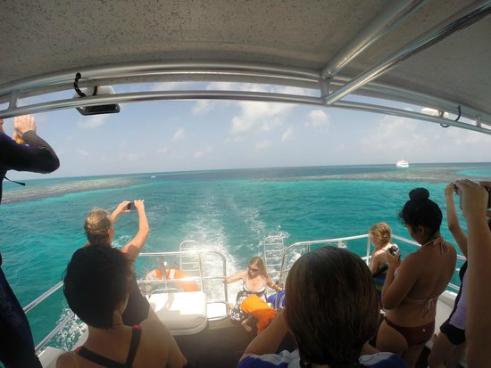 The Great Blue Hole at Lighthouse Reef: BlueHole view