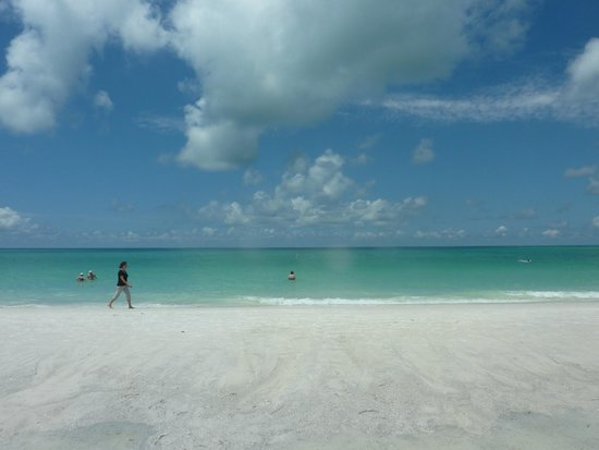 beach on anna maria picture of bridgewalk a landmark resort rh tripadvisor com