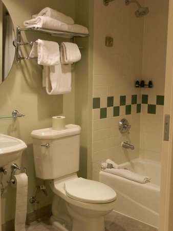 Hard Rock Hotel at Universal Orlando: Spacious bathroom