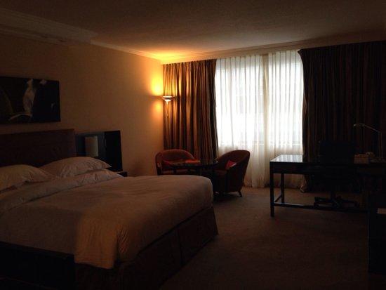 Hilton Buenos Aires: Suite