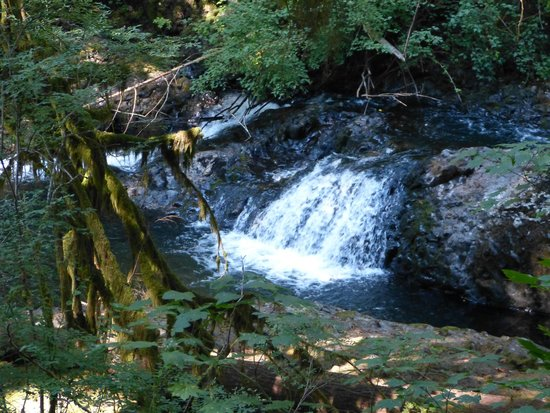 Silver Falls State Park: Each waterfall has it own personality