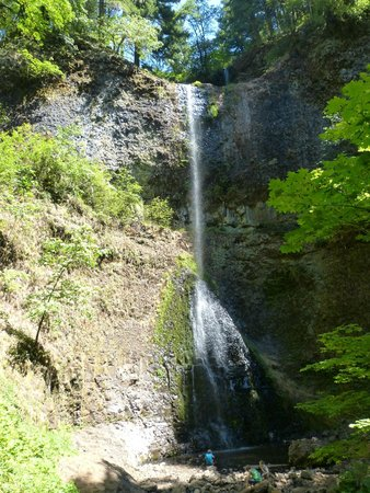 Silver Falls State Park: Picture don't due it justice