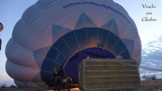 Butterfly Balloons : Paseo en globo