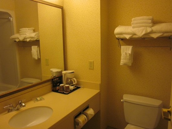 Country Inn & Suites By Carlson, London South, ON: clena and good water pressure