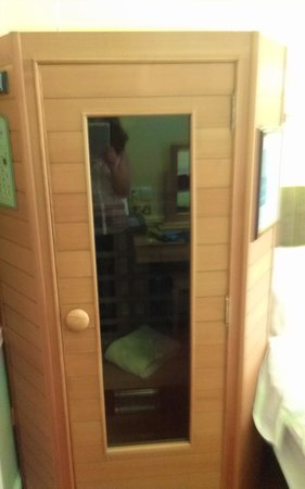 Roxford Lodge Hotel: the sauna, near the bed...