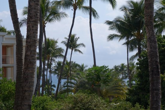 Grand Wailea - A Waldorf Astoria Resort : View from restaurant