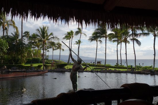 Grand Wailea - A Waldorf Astoria Resort : View from Humuhumunukunukuapua'a
