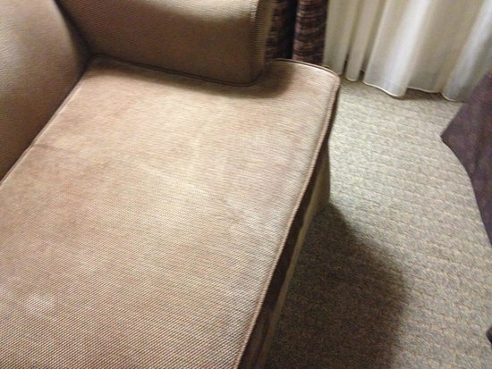 Staybridge Suites Buffalo-Airport : stained sofas