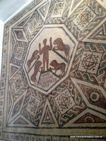 Musée National du Bardo : Leoes