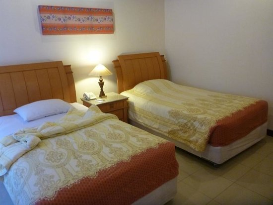 Bintan Agro Beach Resort : Room view 1