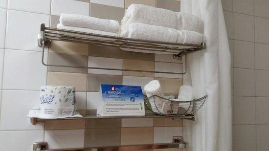 L'Appartement Hotel : Salle de bain