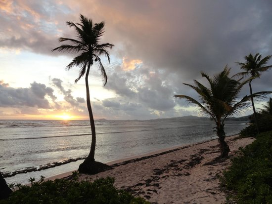 The Palms at Pelican Cove : The sunrise view as viewed from the beach in front of the first villa.