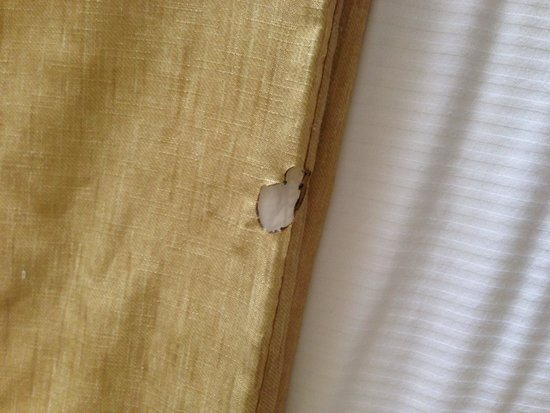 La Quinta Inn & Suites Canton: Hole burned into comforter
