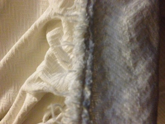 La Quinta Inn & Suites Canton: Very frayed blanket