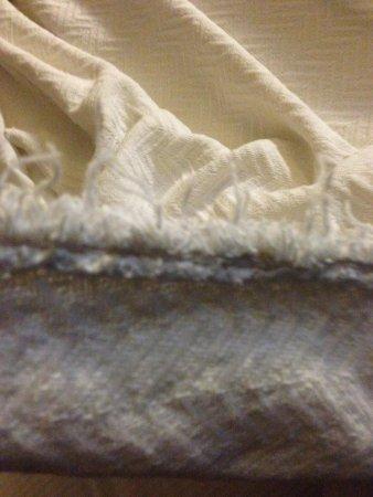 La Quinta Inn & Suites Canton : Very frayed blanket