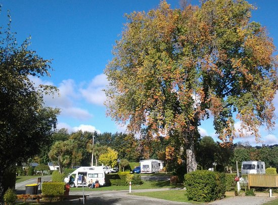 Timaru TOP 10 Holiday Park: Our lovely park