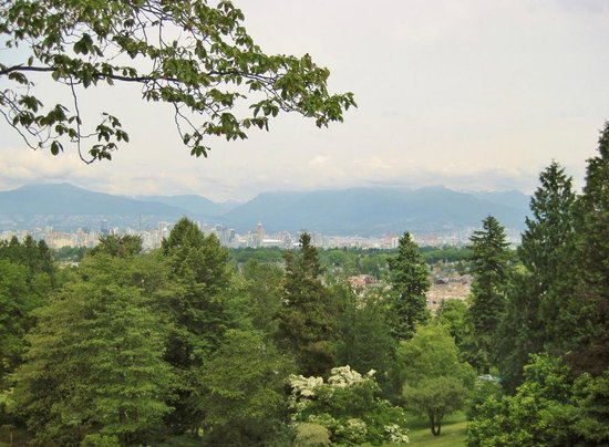 Seasons in the Park: Vancouver skyline view from restaurant