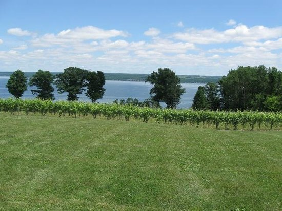 The Thirsty Owl Bistro: Thirsty Owl view of Cayuga Lake