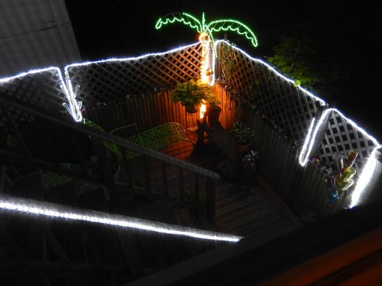 The Gaslamp Bed & Breakfast: Sun deck at night