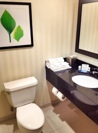 Fairfield Inn Corning Riverside : Bathroom