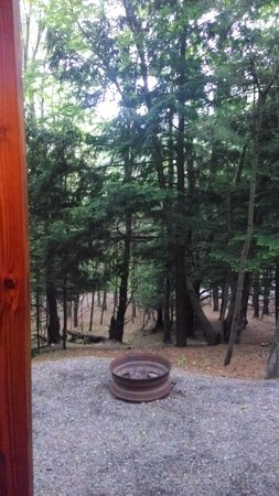 Hartwick Highlands Campground: small cabin view