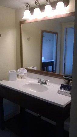 Best Western Hibiscus Motel: Extra sink area
