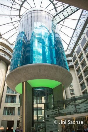 Radisson Blu Hotel, Berlin : Lobby Aquarium